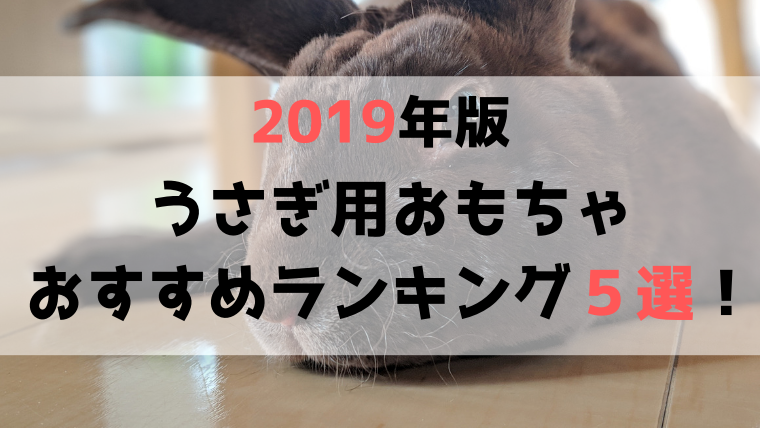 【2019年版】ストレス発散に最適!うさぎ用おもちゃのおすすめランキング5選!